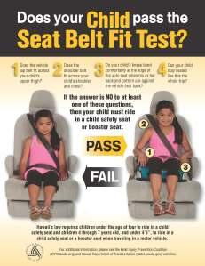 DOT-2013-seatbelt-poster-1c-final